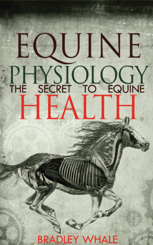 Equine Physiology Ebook
